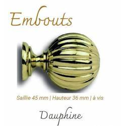 Embout Dauphine Saillie 45...